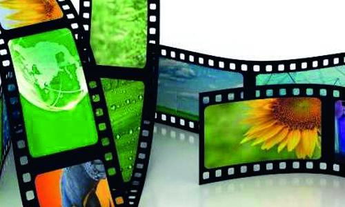 VHS Video und Dias Digitalisierung